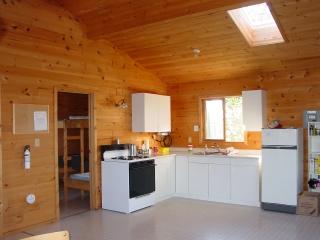 2005-treelined-kitchen